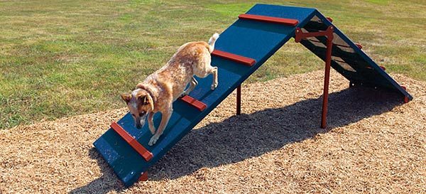 Dog Backyard Playground Equipment : Bark Park Equipment  Dog Parks  New England Recreation Group